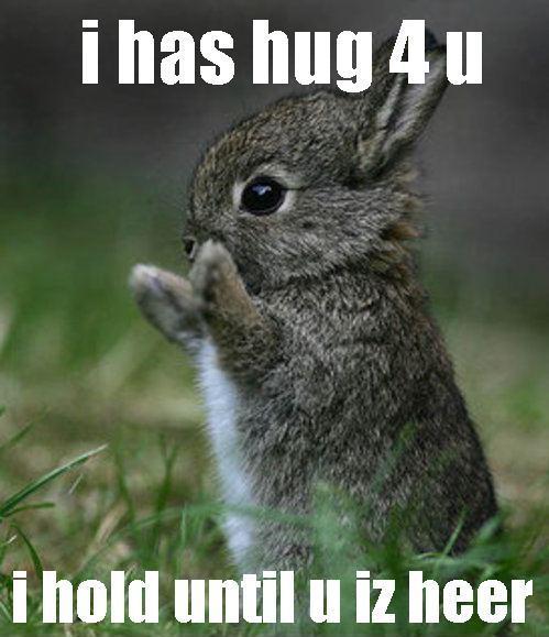 bunnyhug.jpg