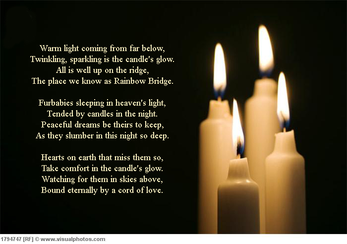 http://www.bunspace.com/static/photobucket/1986/sympathy/candle2.jpg