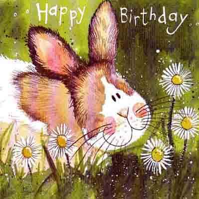 http://www.bunspace.com/static/photobucket/7735/birthdays/HappyBirthday.jpg